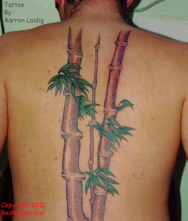 Bamboo Tree Tattoo on Back of Man