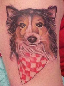 Nice Dog Face Tattoo