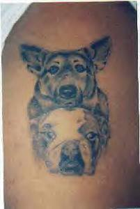 Dog Brothers Tattoo on Arm