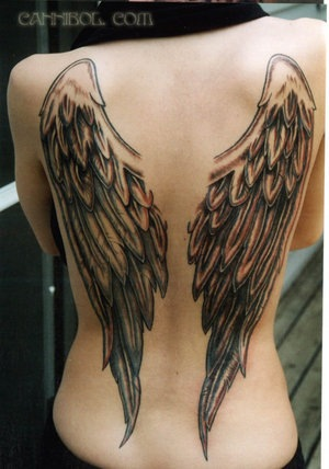 Angel Wing Picture