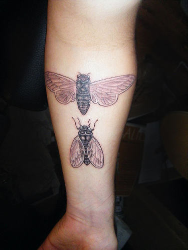 Bumble Bee Tattoos On Arm