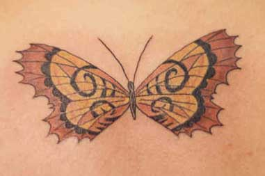 Glorious Butterfly Tattoo