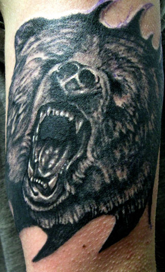Grizzly Black Bear Tattoo