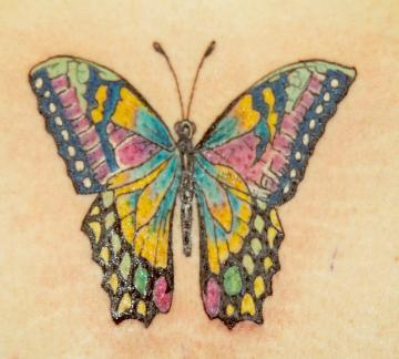 Sweet Colourful Butterfly Tattoo