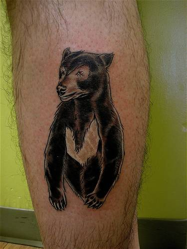 Wild Bear Tattoo On Leg