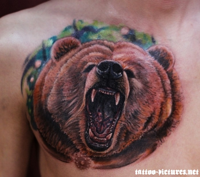 Angry Bear Tattoo On Chest