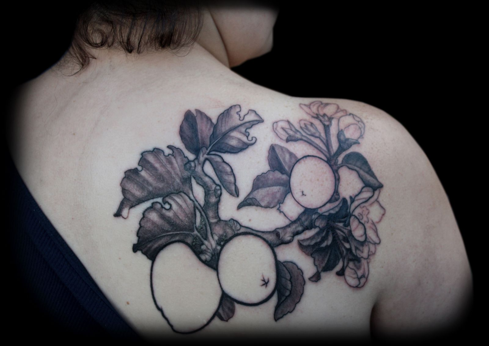 Apple Branch & Blossoms Tattoo