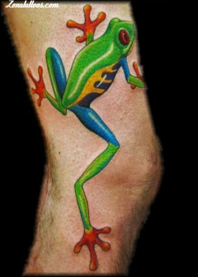 Aqua Frog Tattoo On Elbow
