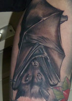 Bat Covered By Wings Tattoo