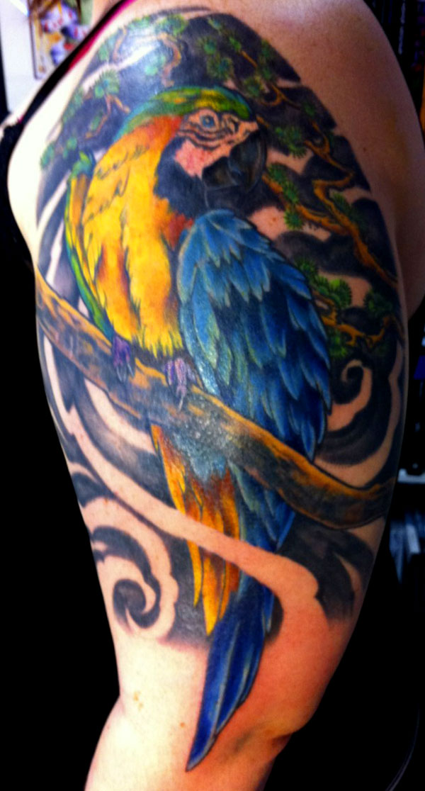 Beautiful Parrot Bird Tattoo On Shoulder