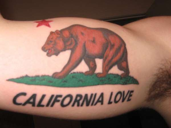California Bear Tattoo On Arm