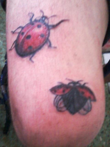 Lady Bug & Bug Tattoo Design