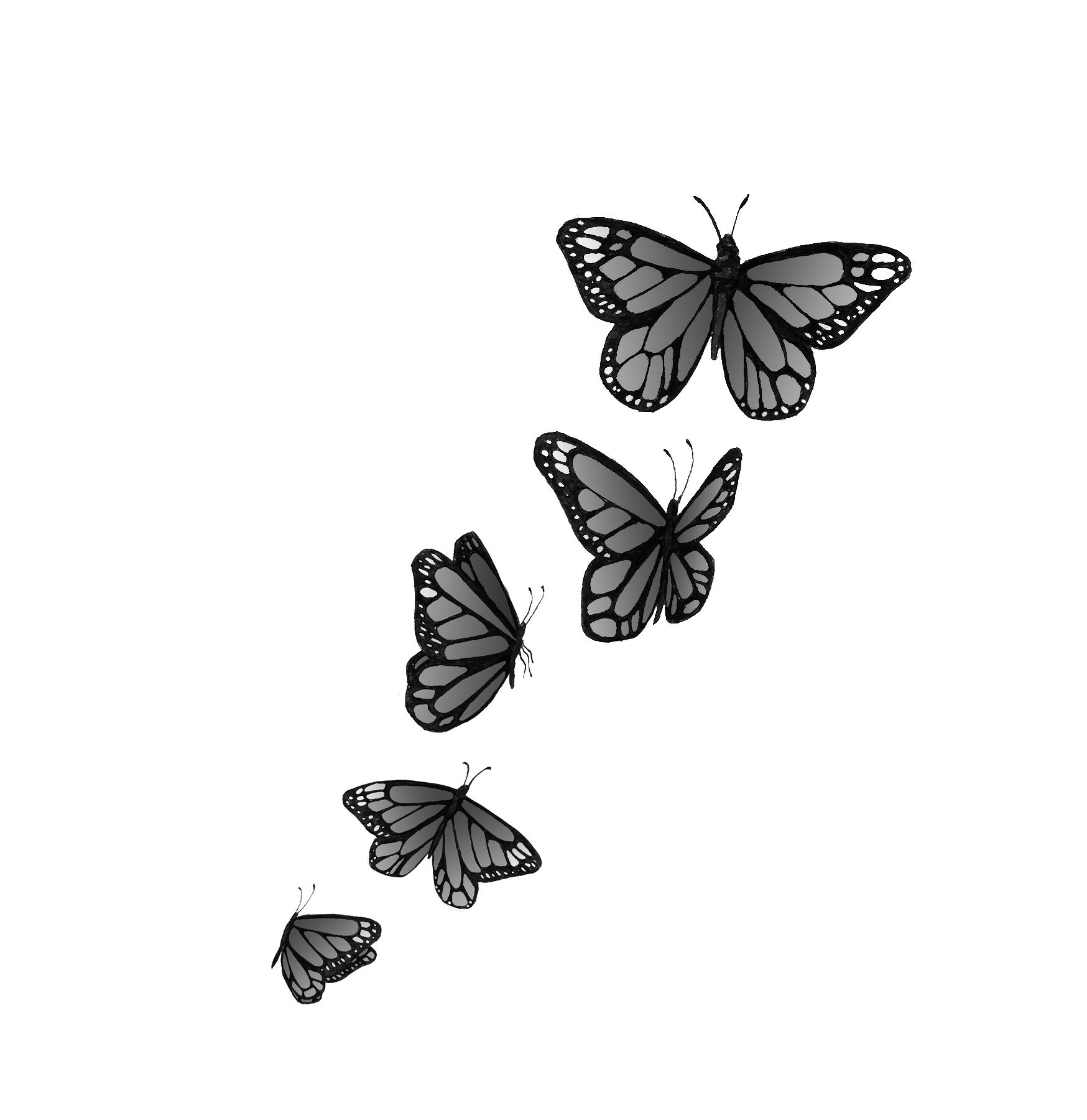 Butterfly Tattoos Designs And Ideas  Page 6
