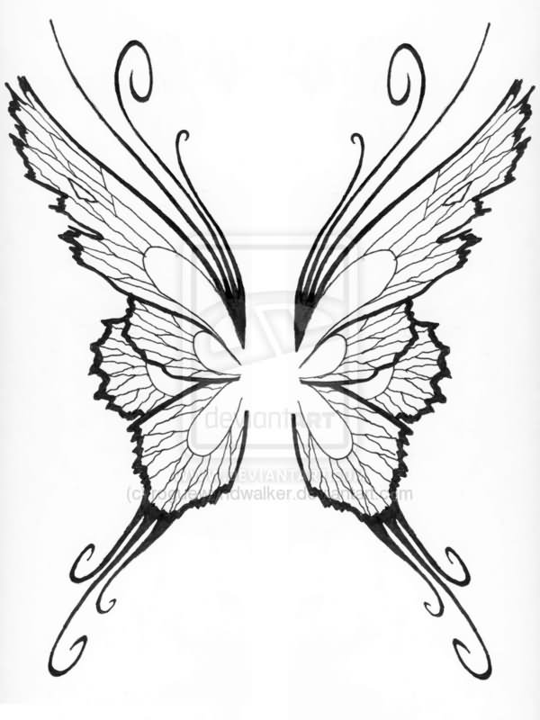Butterfly Wings Tattoo Picture