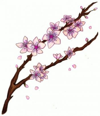 Cherry Blossom Branch Tattoo Design