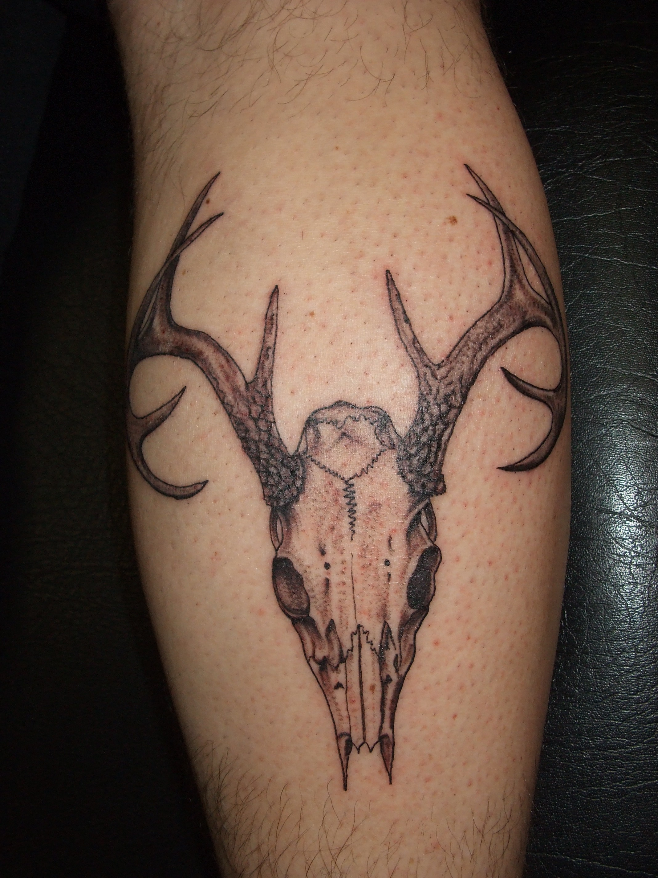 Deer Skull With Antlers Tattoo On Leg