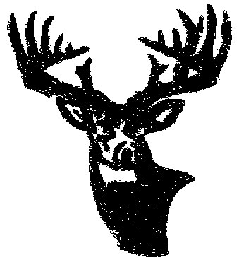 Hunter Deer Tattoo Design