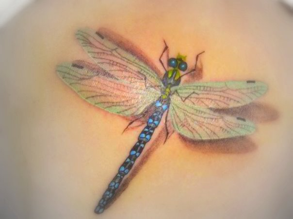 Images another 3d dragonfly tattoo design another 3d dragonfly tattoo