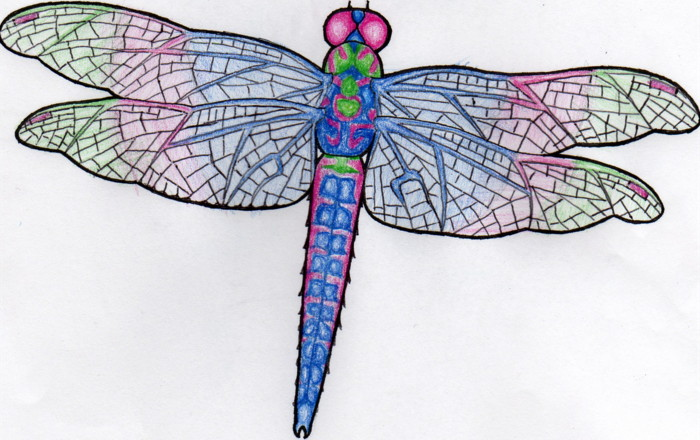 Attractive Dragonfly Tattoo Sample