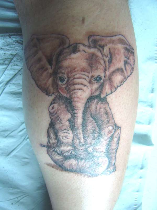 Baby Elephant Closeup Tattoo