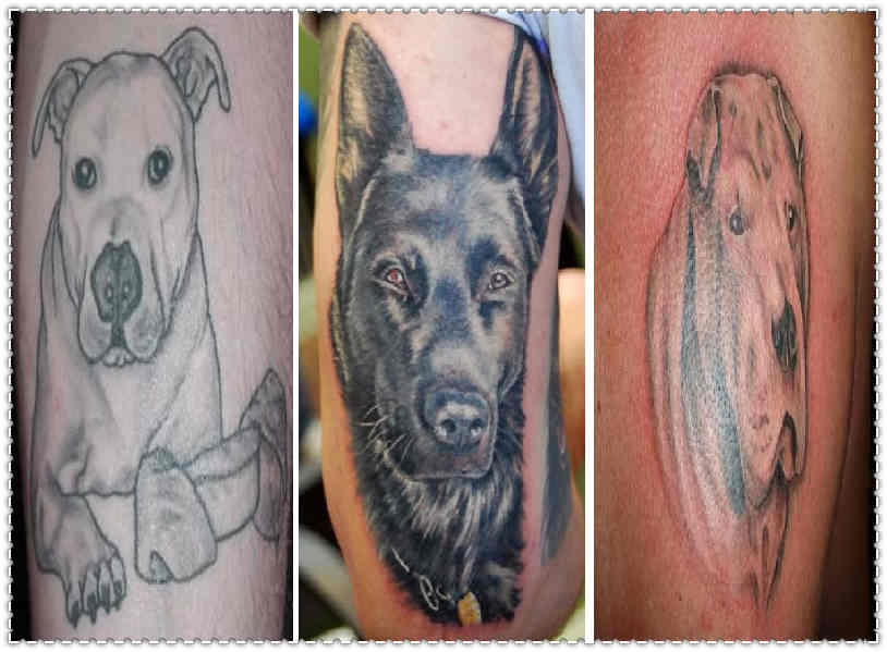 Best Dog Tattoo Designs Of The Year