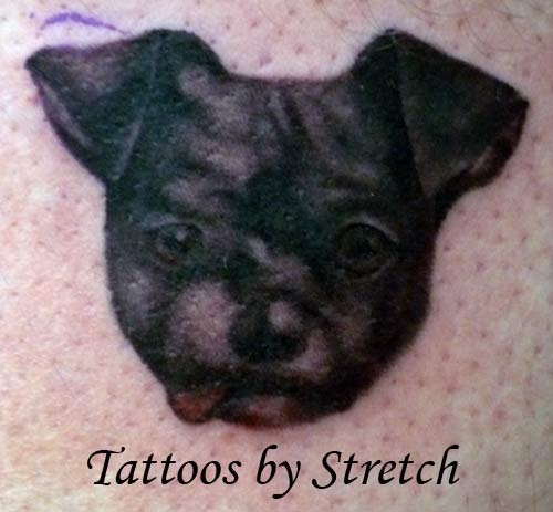 Black Dog Face Portrait Tattoo Design