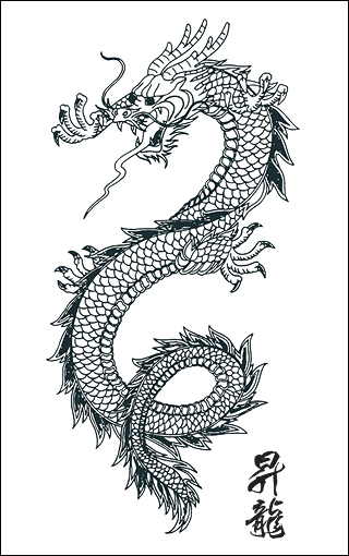 Black n White Dragon Tattoo Design