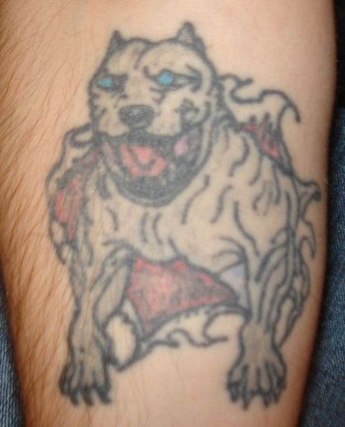 Blue Eyes Bull Dog Tattoo Design