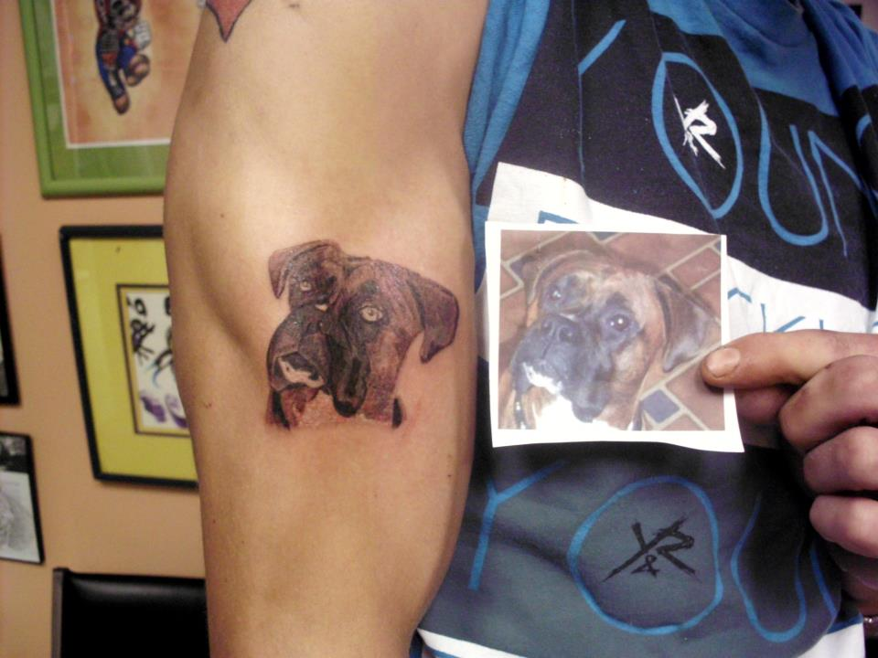 Boxer Dog With Cropped Ears Tattoo Design