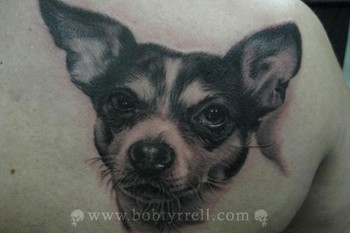 Dog Face Portrait Tattoo On Right Shoulder Back