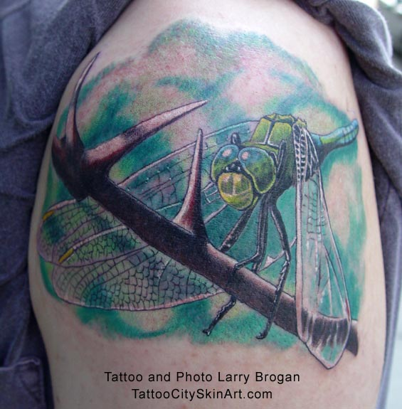 Dragonfly Insect Tattoo On Shoulder
