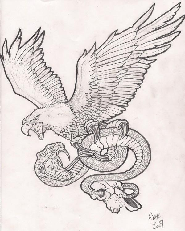 eagle and snake coloring pages - photo #19