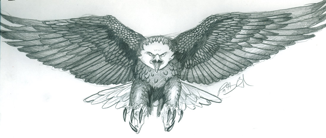 Eagle Tattoo Drawing  Eagle Wings Drawing