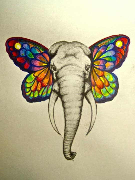 Elephant Butterfly Tattoo Sample