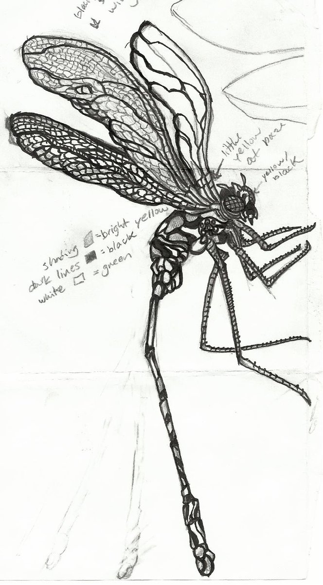 Fantastic Dragonfly Tattoo Sample