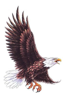 Flying Eagle Tattoo Design