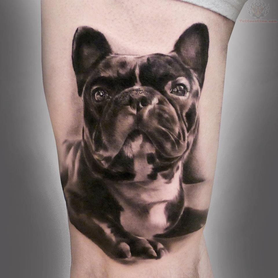 French Bull Dog Tattoo Design