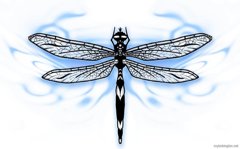 Mind Blowing Dragonfly Tattoo Design