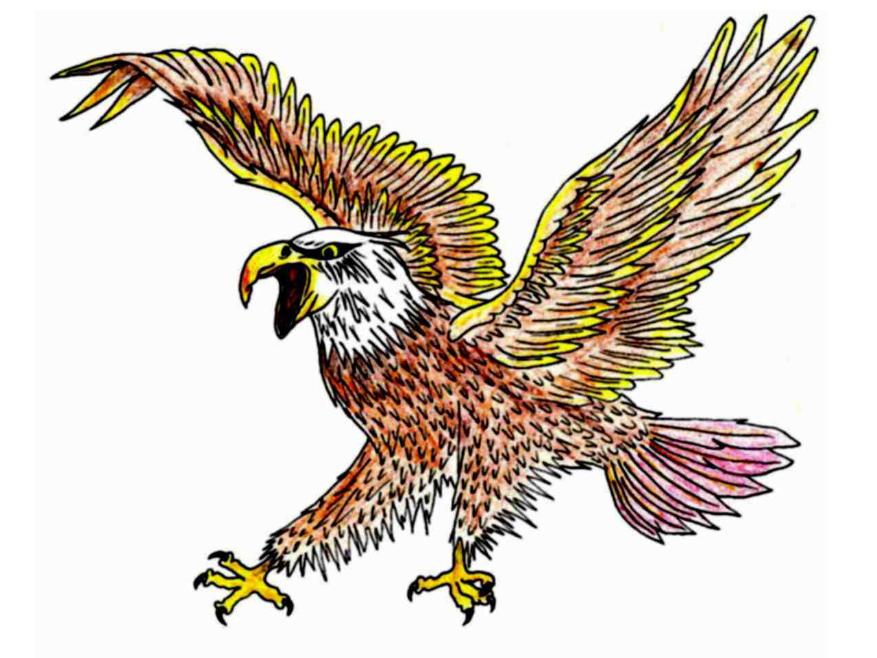 eagle tattoos designs and ideas page 25