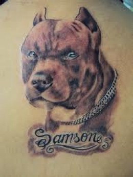 Samson Dog Tattoo On Back