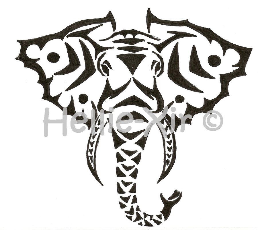 Tribal Elephant Head Images amp Pictures Becuo