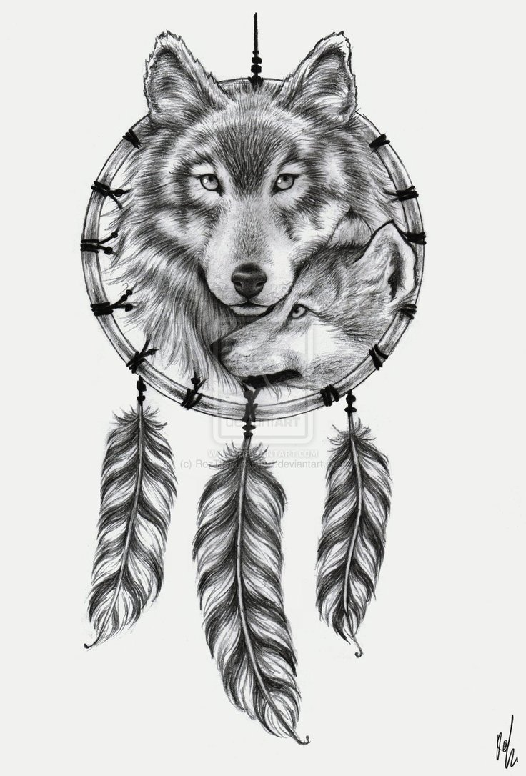 Gallery For gt Native American Wolf Dreamcatcher Tattoo