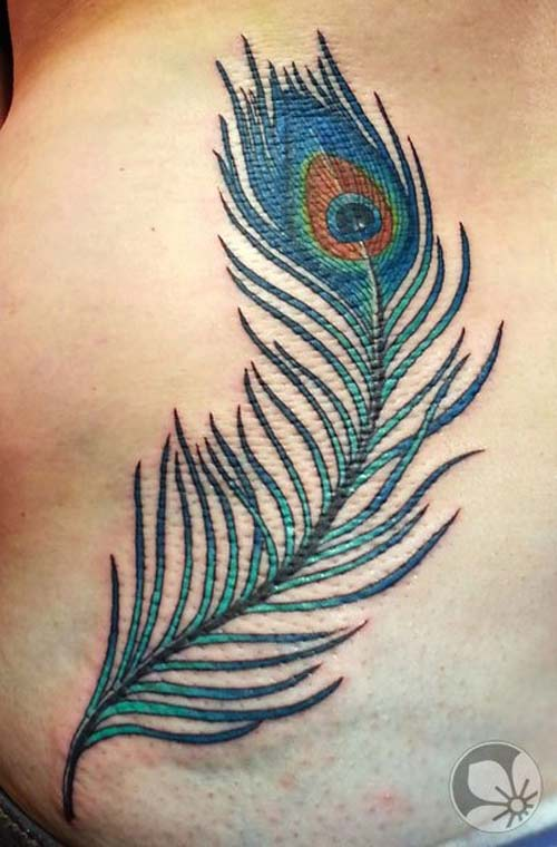 A Peacock Feather Tattoo