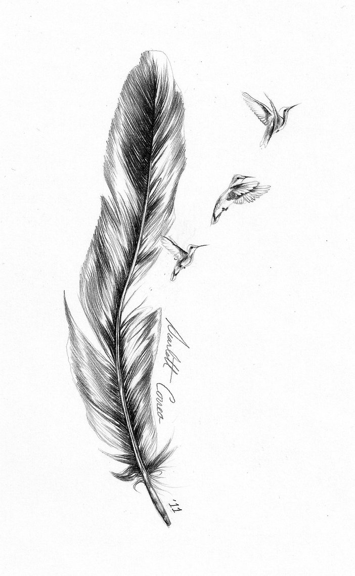 Feather Tattoo With Birds Drawing Ava Ideas On Pinterest Bird