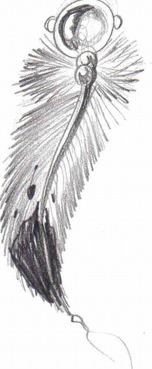 Feather Tattoo Drawing Images amp Pictures Becuo