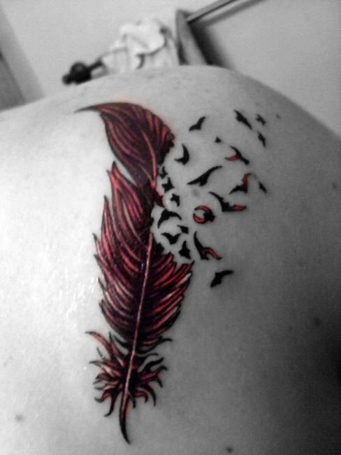 Feather Tattoo With Birds
