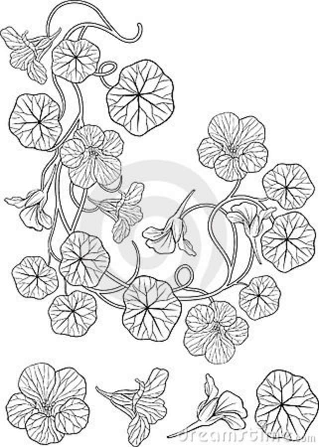 New Style Floral Tattoo Design