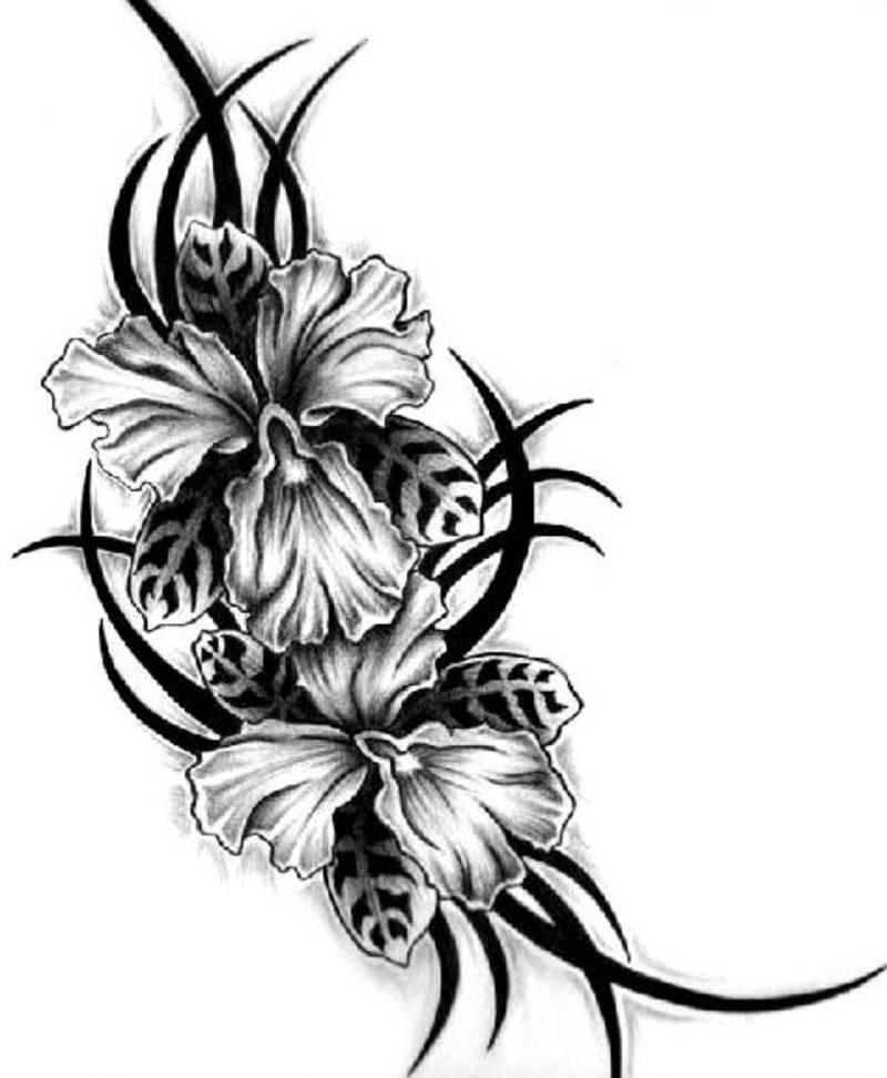 tattoo tribal color for code tattoo more html floral picture tattoos tattoo images under