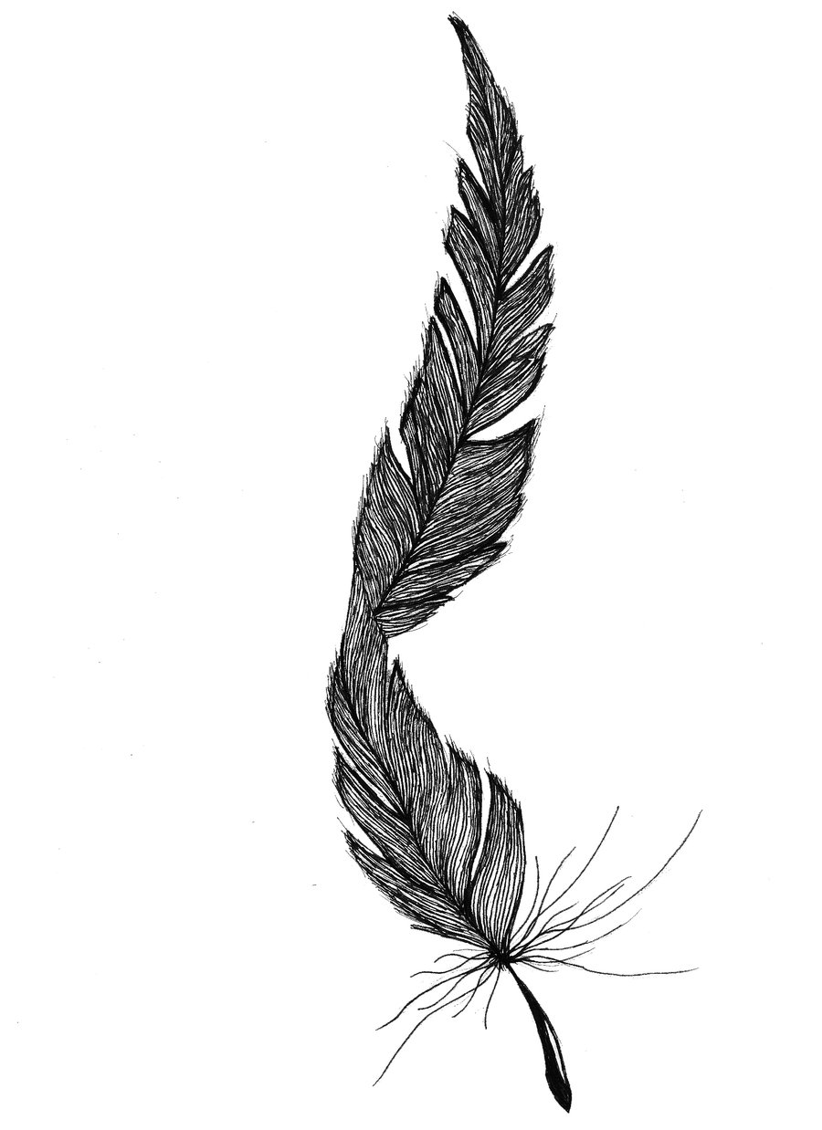 Feather Tattoos Designs And Ideas Page 26