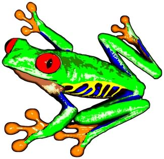 A Green Poison Dart Frog Tattoo Design